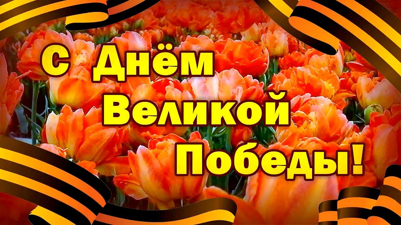 9 мая поздравление администрация фото 51